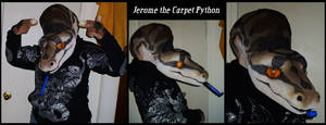 Carpet Python Fursuit Complete by Kiniro-Oniba