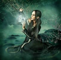 Enchanted by violscraper