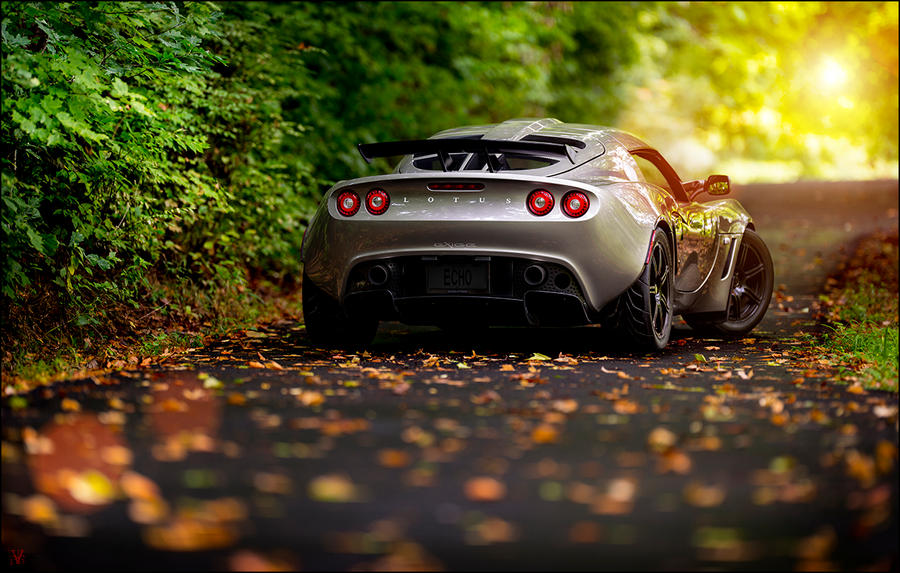 Autumn's Arrival. by VisualEchos