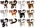 OPEN Lil Cats by Xilllis