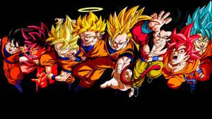 Dragon Ball-Goku All  transformations