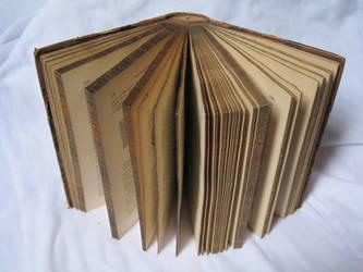 Open book stock 3 by rustymermaid-stock