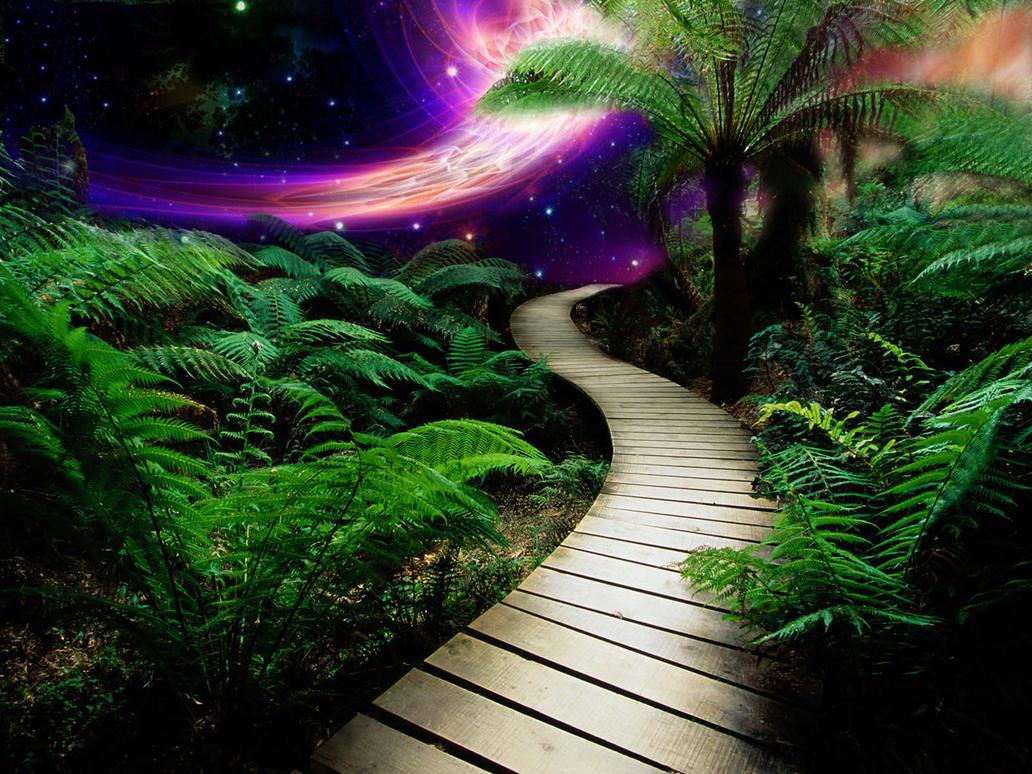 Tropical Galaxy by wallybescotty