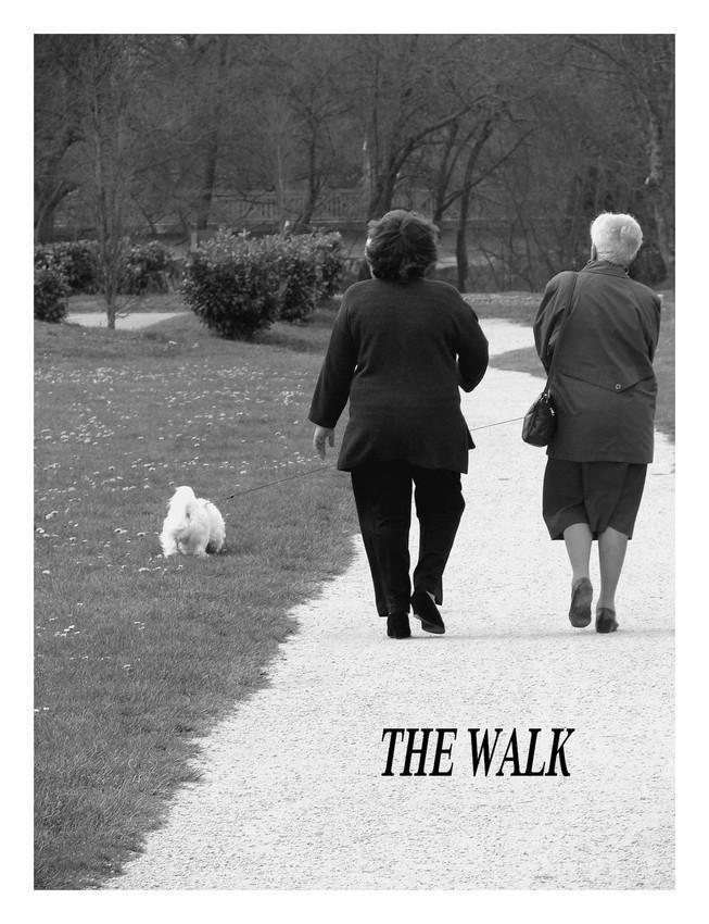 the walk by littlegreencow