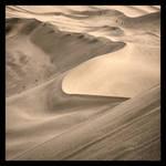Dune by madhubuti