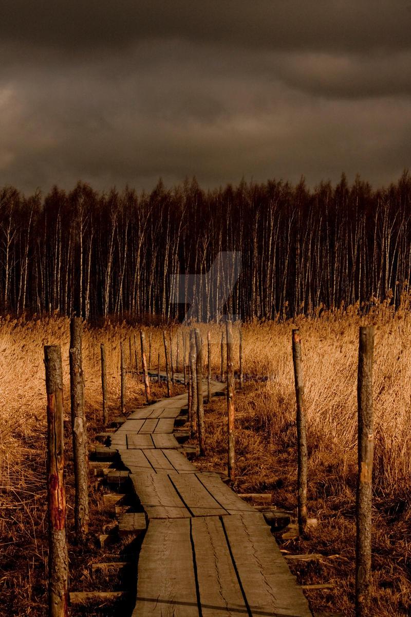 Helsinki by Morass