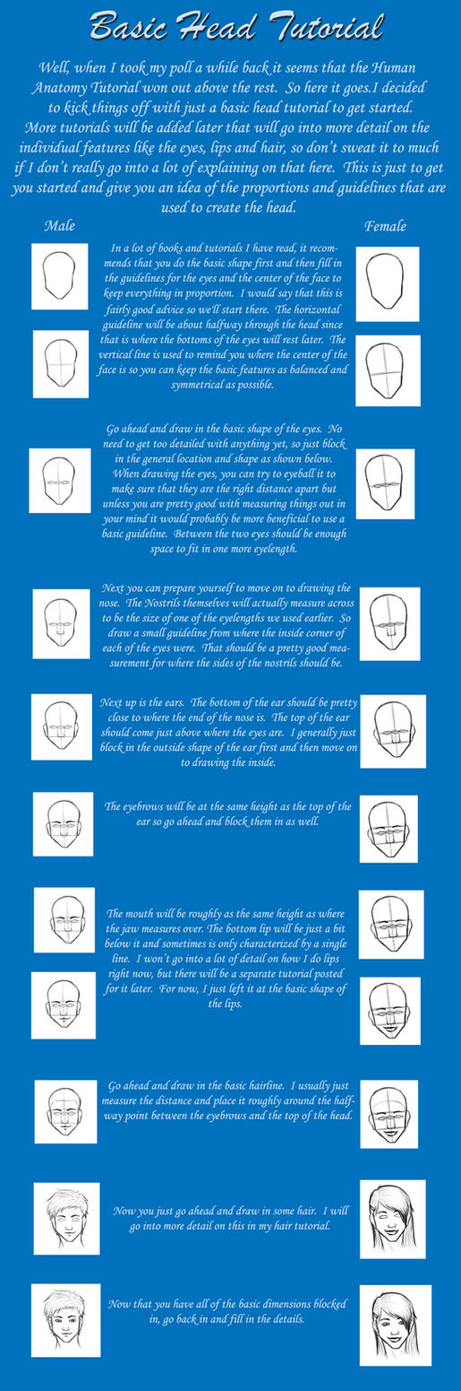 Drawing Heads Tutorial by kimberly-castello
