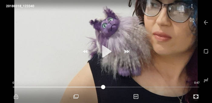 purple and wight little kitty