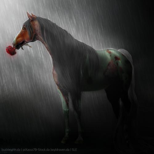 Raindrops On Roses - Horse Avatar