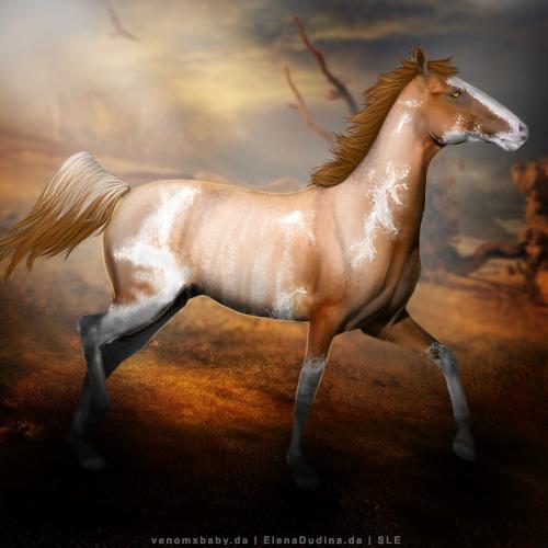 Levero - Horse Avatar