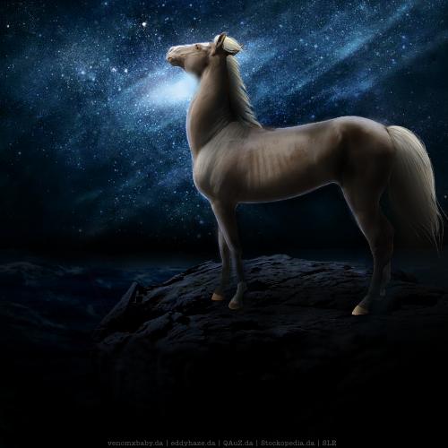 Andromeda - Horse Avatar