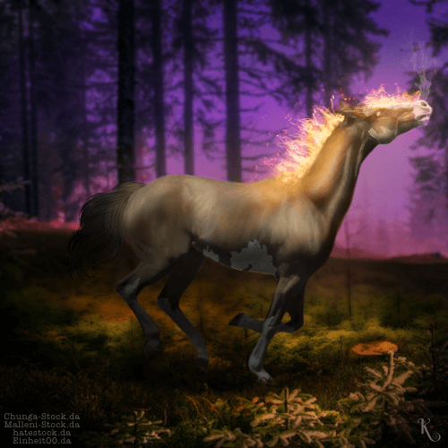 Catching Fire - Horse Avatar