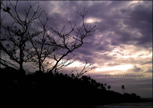 Dawn at the beach!
