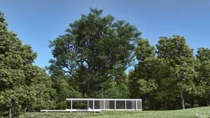 Farnsworth house by AronKamo