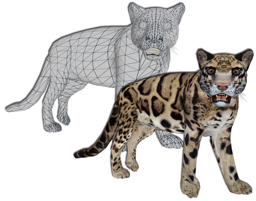 Clouded Leopard Main Skin 2 by GrandeChartreuse