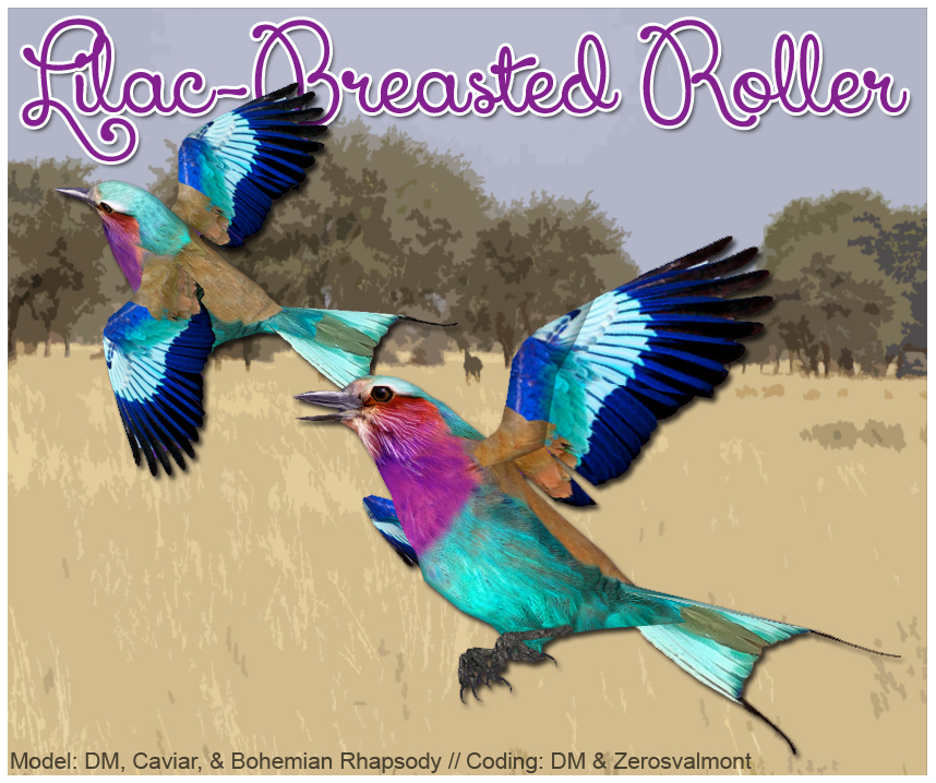Lilac-breasted Roller Download Screen by GrandeChartreuse