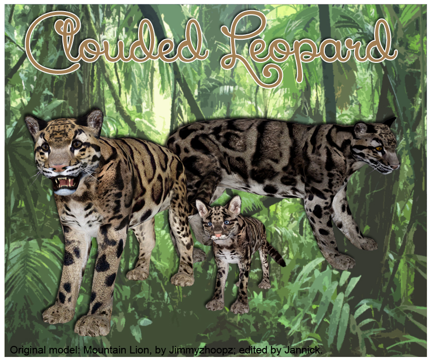 Clouded Leopard Download Screen by GrandeChartreuse