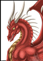 Curious Red Dragon by DrakainaQueen