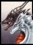 Dragon Gift Art