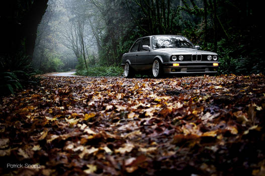 e30 fall REEDIT