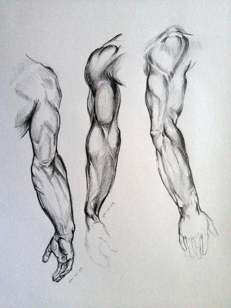 Arm Sketches by AdanMGarcia on DeviantArt