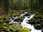 Babbling creek 2