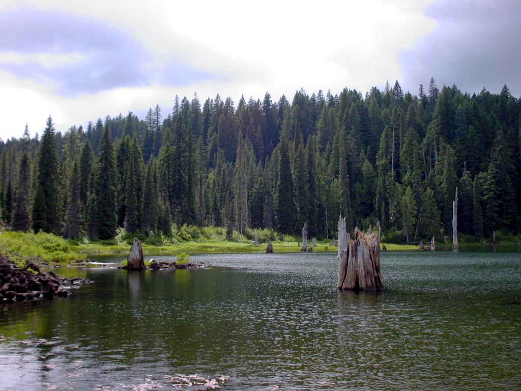 Quiet lake newar Mt. St. Helen
