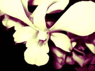 Silky smooth by dvsbabygurl