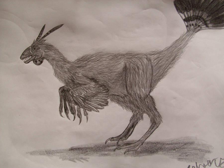 Protarchaeopteryx by Teratophoneus