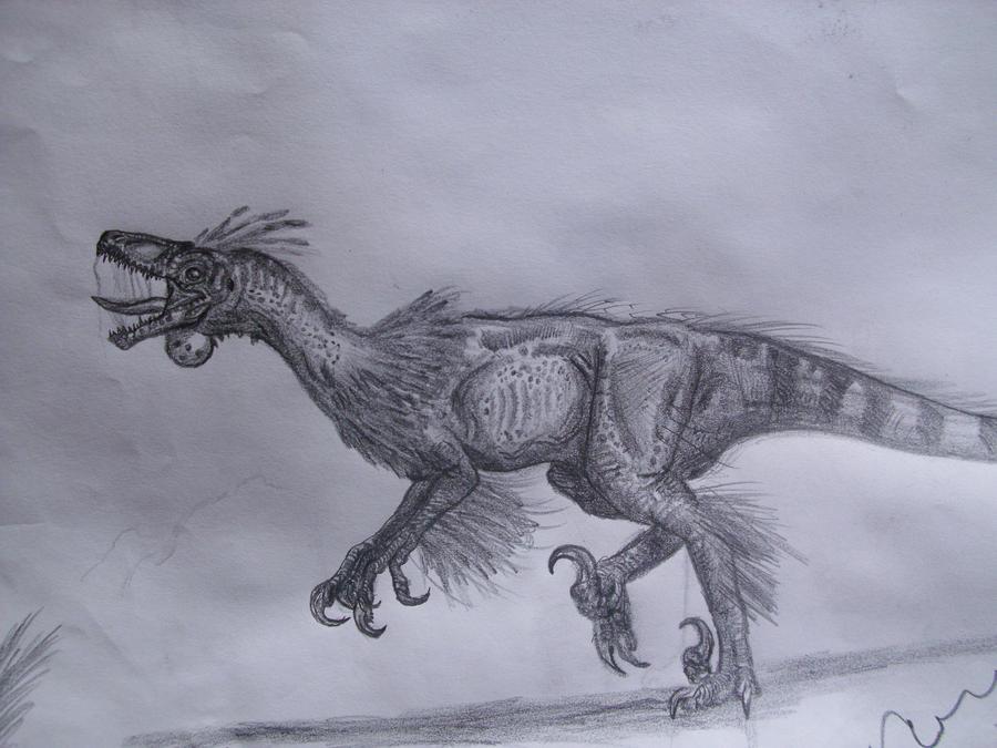 Pyroraptor by Teratophoneus