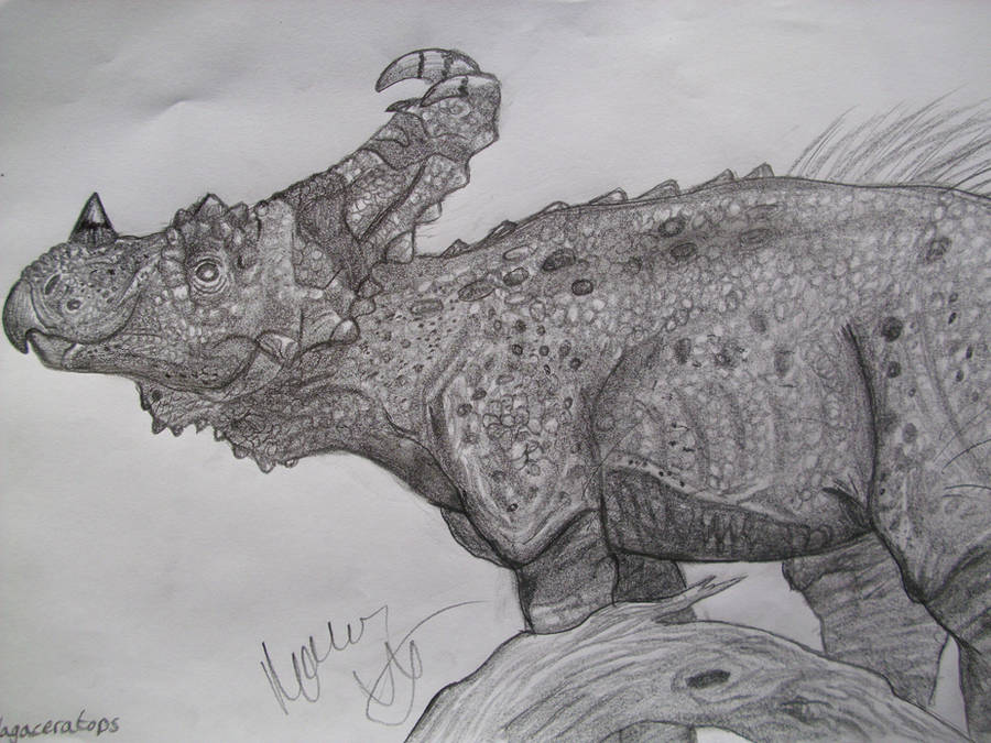 Vagaceratops by Teratophoneus