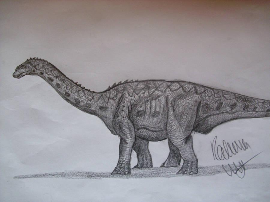 Bellusaurus by Teratophoneus