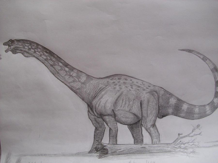 Futalognkosaurus dukei by Teratophoneus
