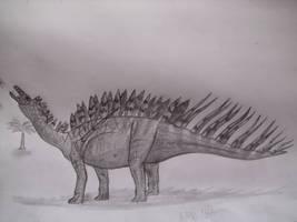 Miragaia longicollum by Teratophoneus