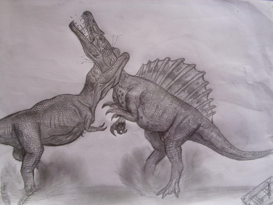 Spinosaurus vs t Rex Drawing Spino vs t Rex by