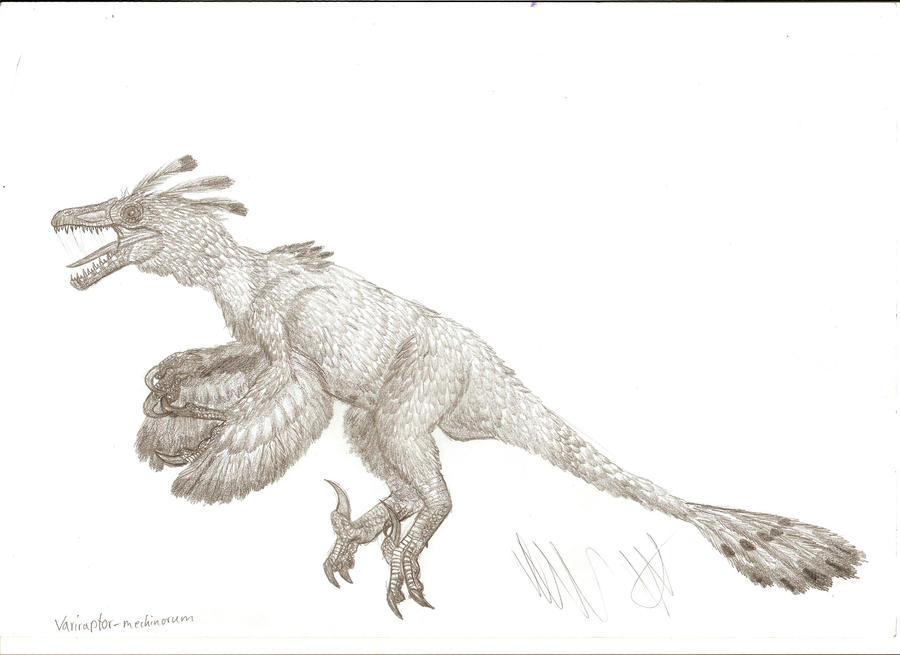 Variraptor mechinorum by Teratophoneus