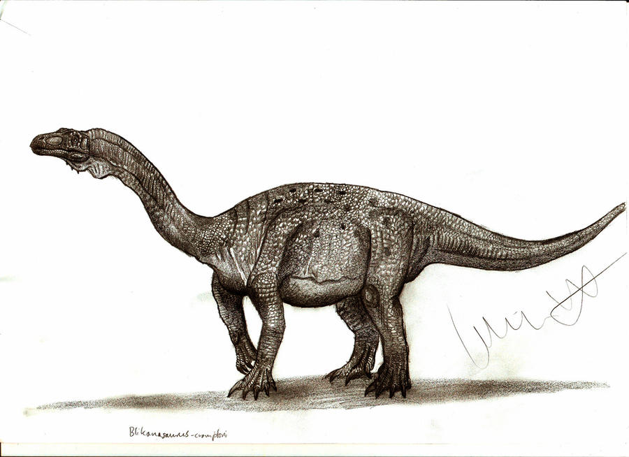 Blikanasaurus cromptoni by Teratophoneus on DeviantArt