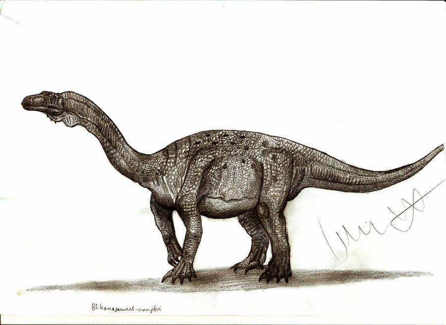 Blikanasaurus cromptoni by Teratophoneus