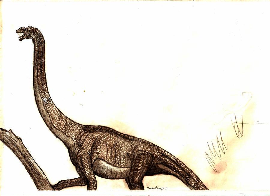 Mamenchisaurus constructus by Teratophoneus