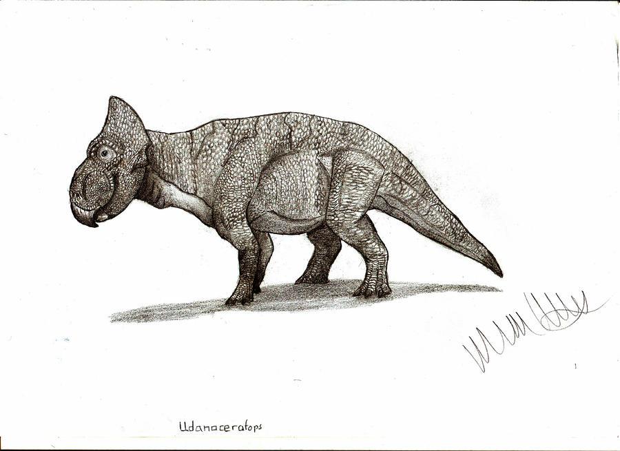 Udanoceratops tschizhovi