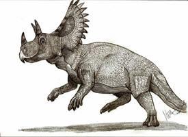 Ceratops montanus by Teratophoneus