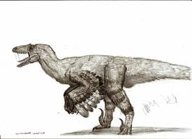 Dromaeosauroides bornholmensis by Teratophoneus