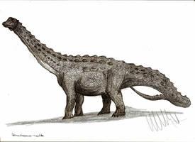 Diamantinasaurus matildae by Teratophoneus