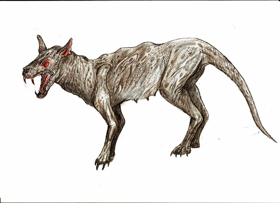 Til The First Sighting Of The Chupacabra Was By Madeline Tolentino In Puerto Rico After She Saw