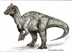 Prosaurolophus maximus by Teratophoneus