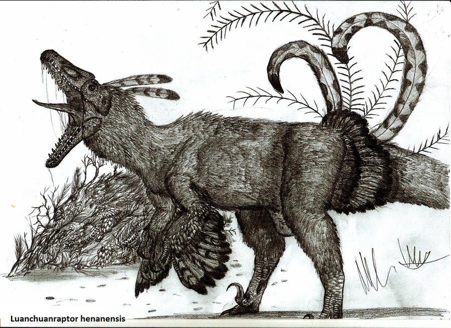 Luanchuanraptor henanensis