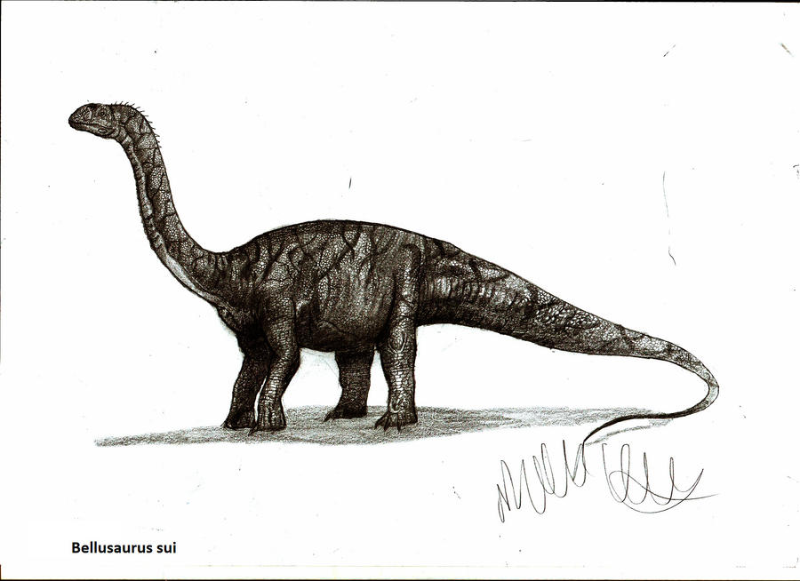 Bellusaurus sui by Teratophoneus