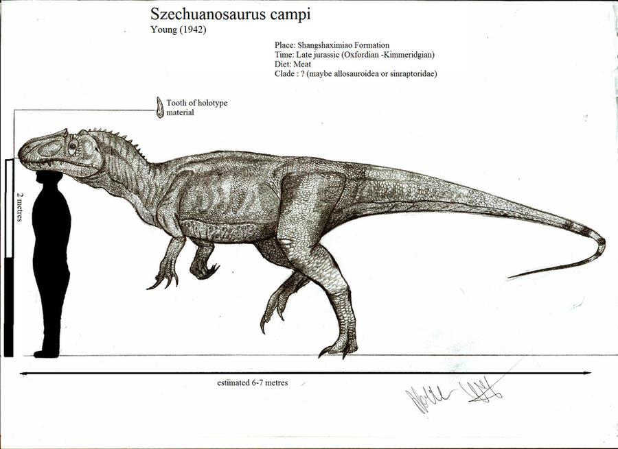 Szechuanosaurus campi