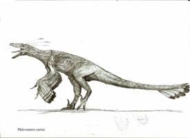 Philovenator curriei by Teratophoneus
