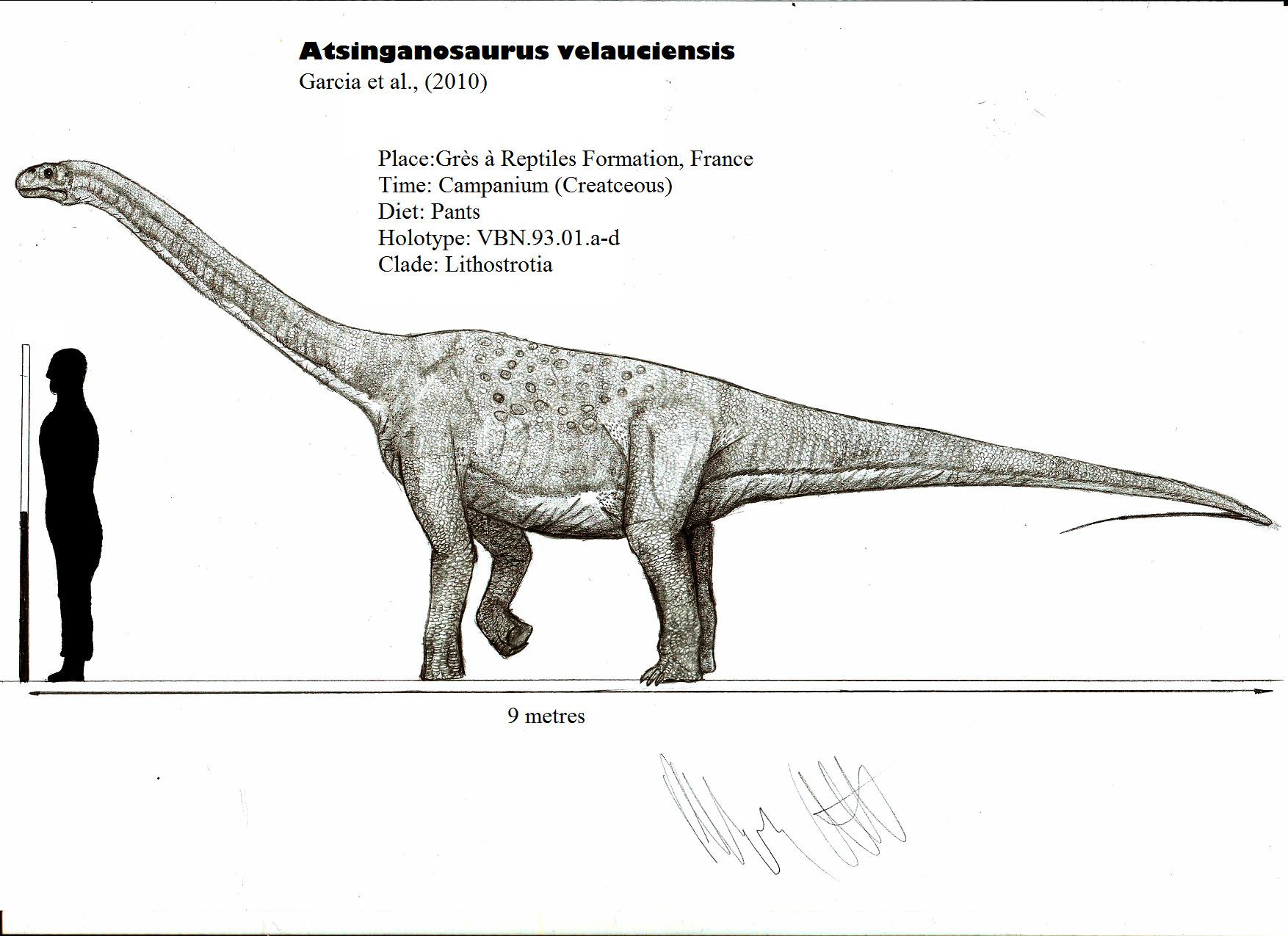 Atsinganosaurus velauciensis
